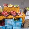 FUJIWARA-ROOTS-FARM フジワラ ルーツ ファーム 長野市 りんご農家 ジュース