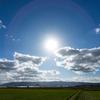 太陽光発電1年目の実績