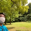 赤塚公園で緑を見てきました。
