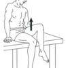 下肢筋力の見方memo