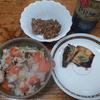 炊き込み人参ご飯と焼き鯖のわさび添え
