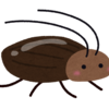 なぜゴキブリは人間たちから嫌われるのか 適当に考えてみた