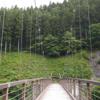 マイナスイオンを感じながら自然が楽しめる風のつり橋