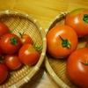 トマトの直売所