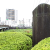 中津川治水碑と明治43年の大水害。