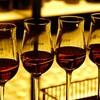 銀座のマデイラワインの聖地、マデイラエントラーダに行ってきたレポート!