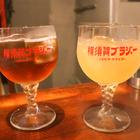 飲めるブラジャー「横須賀ブラジャー」を探して