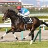 【競馬】2017年日本ダービー枠順発表!気になるあの馬は?と言うかアドミラブルは?!【予想】
