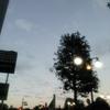 PARSONZ  @  渋谷公会堂へ行ってきました!