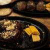 熟成肉ステーキ と ホタル観賞