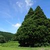 鮭川村の歴史と史跡をご紹介!🏞️