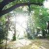 先崎(まっさき)と別所廃寺跡