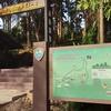 年末年始休暇 タイ北部 ランパーン/Lampang (ลำปาง)へ! -Day 2-25DEC'17 / Trekking in Thailand National Parks No.2 - ドイクンタン国立公園/Doi khun tan national park(อุทยานแห่งชาติดอยขุนตาล) でキャンプと野生の蘭~後半~