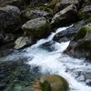 水緩まない渓流