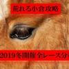 【小倉競馬攻略】 荒れる小倉最終週で万馬券ゲット!条件別の傾向分析!