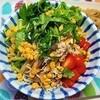 【ストレス解消レシピ】薬味たっぷり蕎麦の作り方。