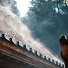 【半径100mの写真展】朝の宝達志水町 岡部家 - SIGMA fp x 45mmF2.8DG DN -