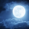 月のリズムに従順に過ごしてみたら、大変なことになった