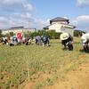 神原町花の会(花美原会)(328)  平成30年第1回花協同活動と10年間の協力・支援に感謝