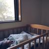 赤ちゃんと過ごす1ヶ月半