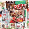 情報 料理提案 夏のパワーめし カスミ 8月4日号