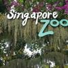 ワープアリーマンがシンガポール旅行に行ってきたその4