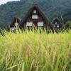 飛騨の秋景色 【9月上旬の白川郷】