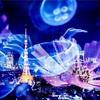 【必見】東京タワー水族館のホームページが、昭和すぎてアツい!