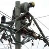 Bảo hộ lao động trong ngành điện lực.