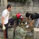春日墓地の清掃