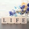 就活中の過ごし方とは?ネガティブにならずに生活することです!