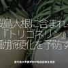 442食目「桜島大根に含まれる『トリゴネリン』が動脈硬化を予防する」鹿児島大学農学部が臨床結果を発表