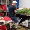 アールスメール花市場の調整作業