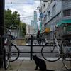訪日客でリゾート化する大阪西成区、あいりん地区釜ヶ崎を散策。数年後にはこの町の景色は激変するだろう。