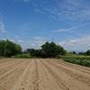 次はジャガイモづくり!悠悠ホームの健康農園