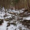 冬の入道ヶ岳