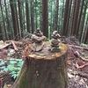 本仁田山登山とことこソロツーリング(2016/06/19)