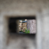 4月中旬:新旧が混在する松陰神社周辺をお写んぽ。其の参