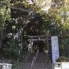 代々木八幡宮に参拝に行ったら、たくさんの猫さんに会いました。