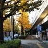 銀杏を見に行く~東京の紅葉