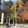 12月の椿大神社と小岸大神社