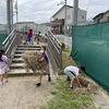 1年生:刈った草を集めて 先生のお手伝い