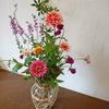 庭からの切り花