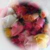 + クリスマスにバラの花束 +