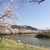 大池公園と筑波山神社・御座替祭
