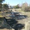 動植物園とその周辺の被害状況