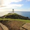 ニュージーランド最北端にある秘境、ケープ・レインガとワイポウア・フォレストに行ってきた!!