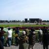 東京芝2000m(2歳戦)種牡馬別ランキング