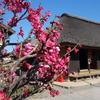続々・埼玉県和光市レトロ散歩『新倉ふるさと民家園と生活道具展示』