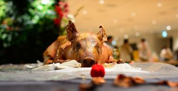 目の前で解体される豚の丸焼き!何が出るかわからない、9月DMM社員交流会レポート